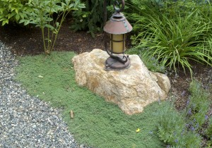 Rock pathlight