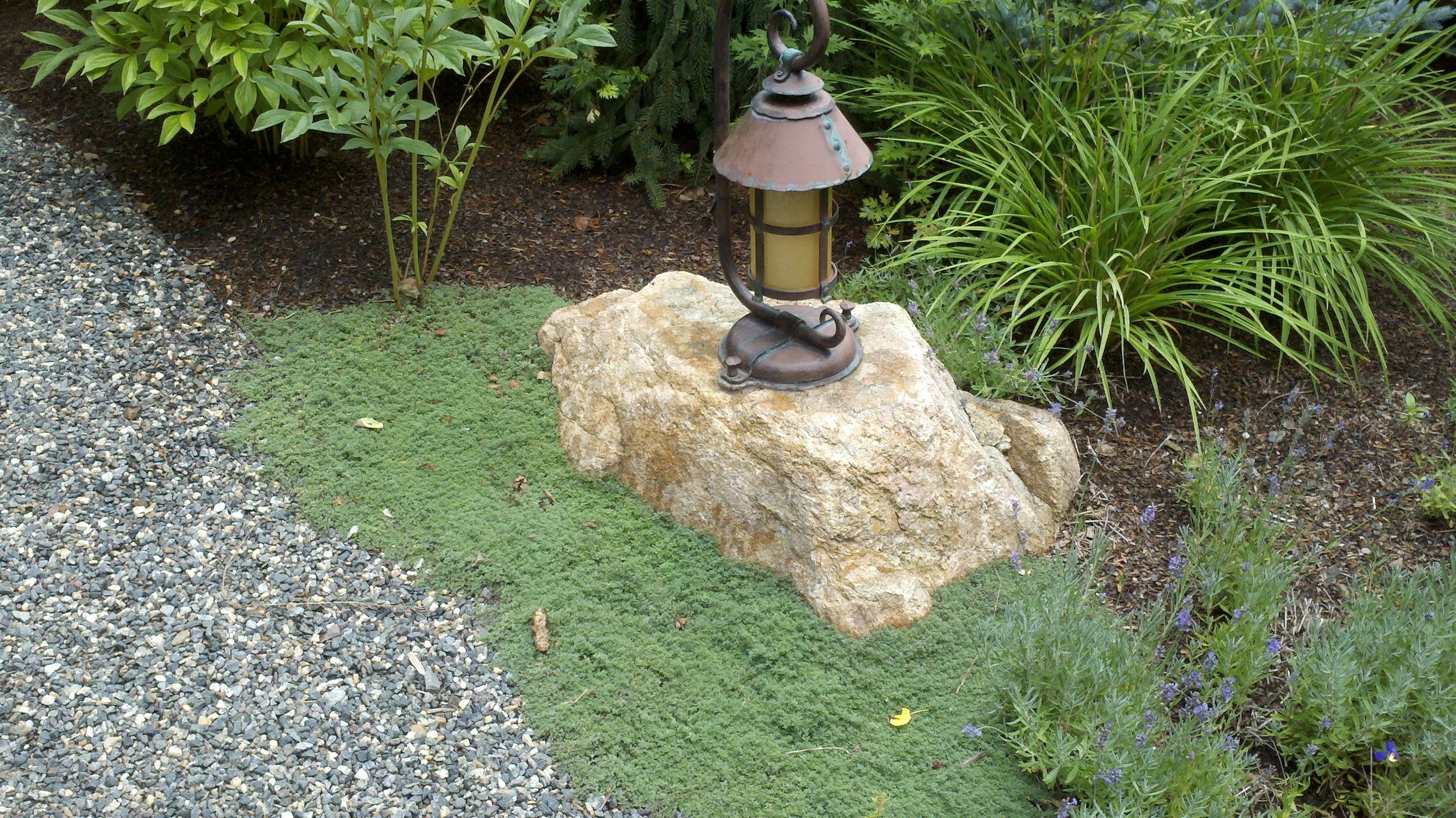 Denver landscape design free verdant with denver for Insite landscape architects