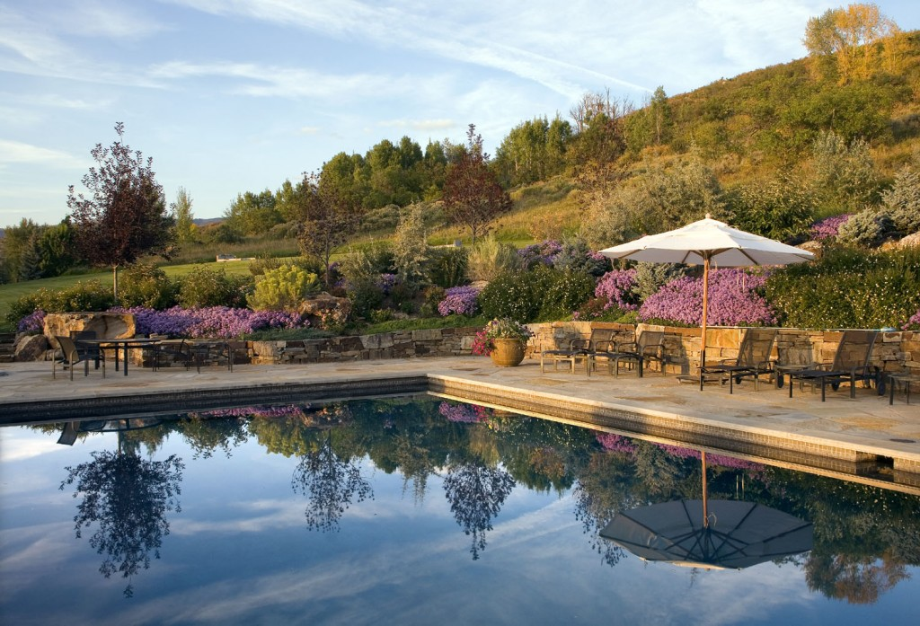 Poolside natural garden.