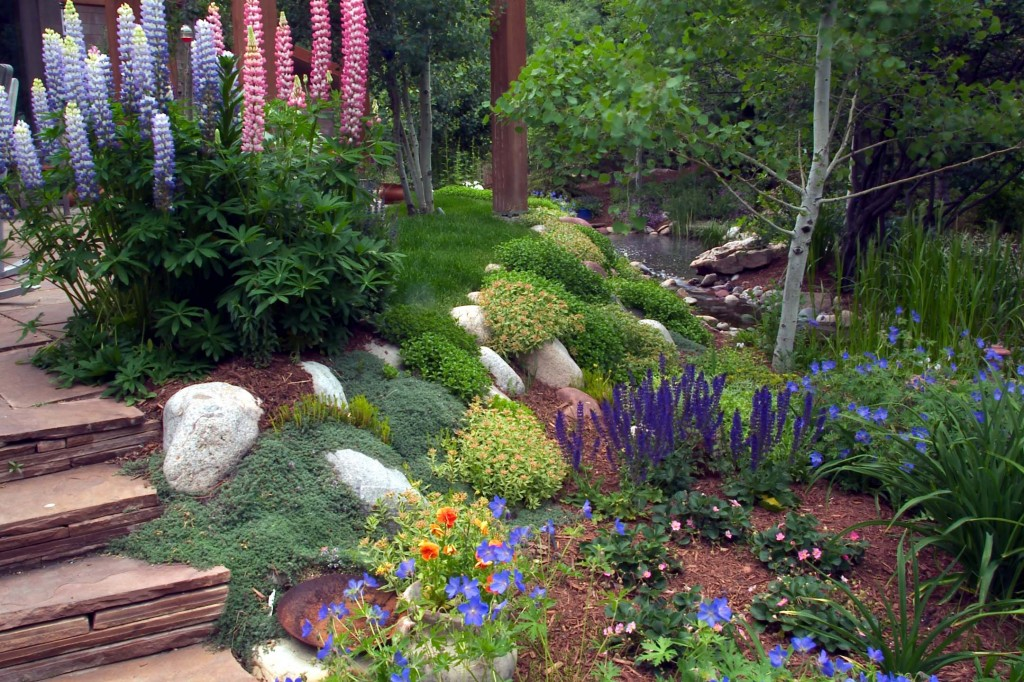 Colorful planted slope off patio.
